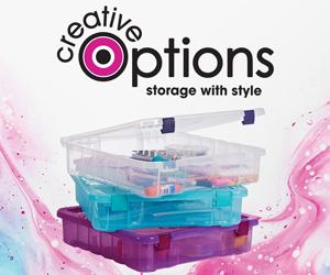 Creative Options 12 x 12 storage box