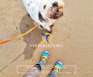 Evercreatures Funky Wellies