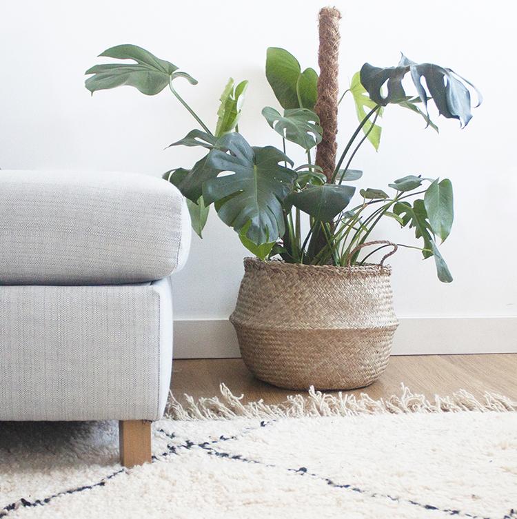 Berber rug and seagrass basket