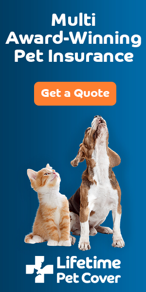 Buster and Luna - Get a Quote