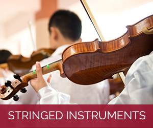 Stringed Instruments 1