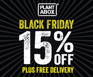 Black Friday 15% off